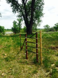 Riparian fencing built along the Missouri through Ranching for Rivers.